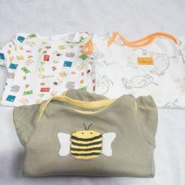 x3 bodysuits Gruffalo, Dear Zoo & Bee 0-3 months