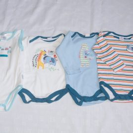 x3 long sleeved bodysuits & x1 short sleeved 6-9 months