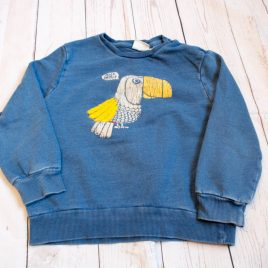 Zara blue parrot jumper 3-4 years