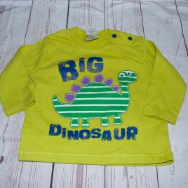 New 'Big dinosaur ' green top 3-6 months