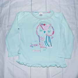 Mint owl top 18-24 months