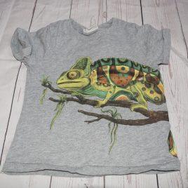 H&M grey lizard t-shirt 2-4 years