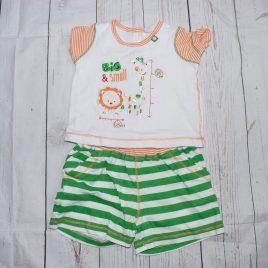 Lion & giraffe t-shirt & shorts outfit 9 months