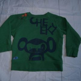 Next green cheeky monkey top 2-3 years