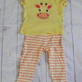 Giraffe t-shirt & leggings outfit 18-24 months