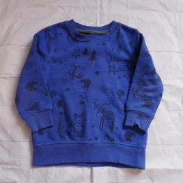 Blue forest jumper 2-3 years