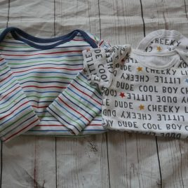 x2 bodysuits (one long & one short sleeved) 9-12 months