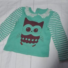 Green owl top 2-3 years