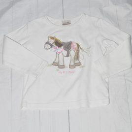 My no 1 pony top 2-3 years