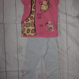 Giraffe T-shirt & leggings outfit 2-3 years